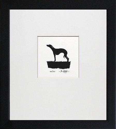 Whippet in Black Frame