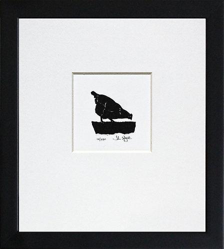 Hen - Pecking in Black Frame