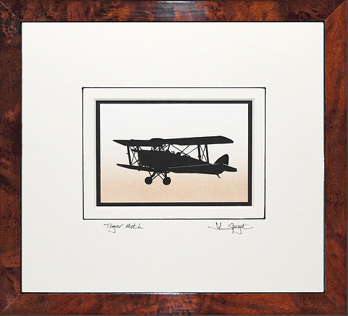 Tiger Moth in Walnut Veneer Frame