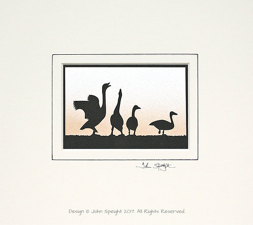 Beswick Swans