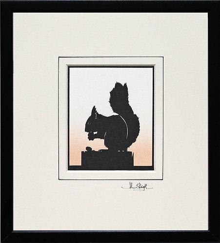 Squirrel in Black Frame