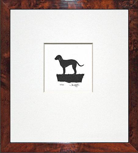 Bedlington Terrier in Walnut Veneer Frame