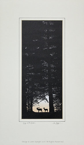 """Deer """"Edge of the Forest"""""""