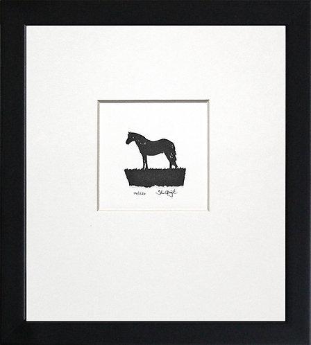 Connemara Pony in Black Frame