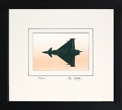 Typhoon (from above) in Black Frame