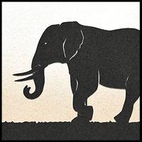 eleph.jpg
