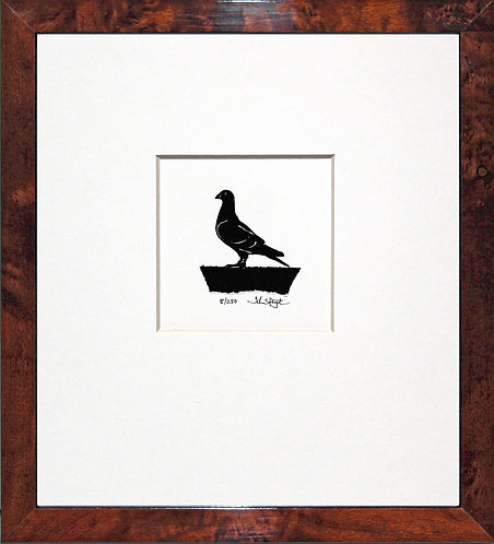 Homing Pigeon in Walnut Veneer Frame