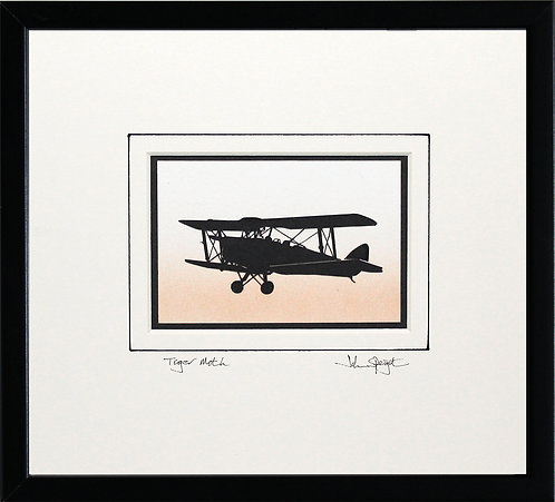 Tiger Moth in Black Frame