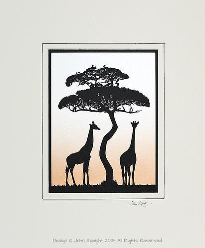 Giraffes - Large