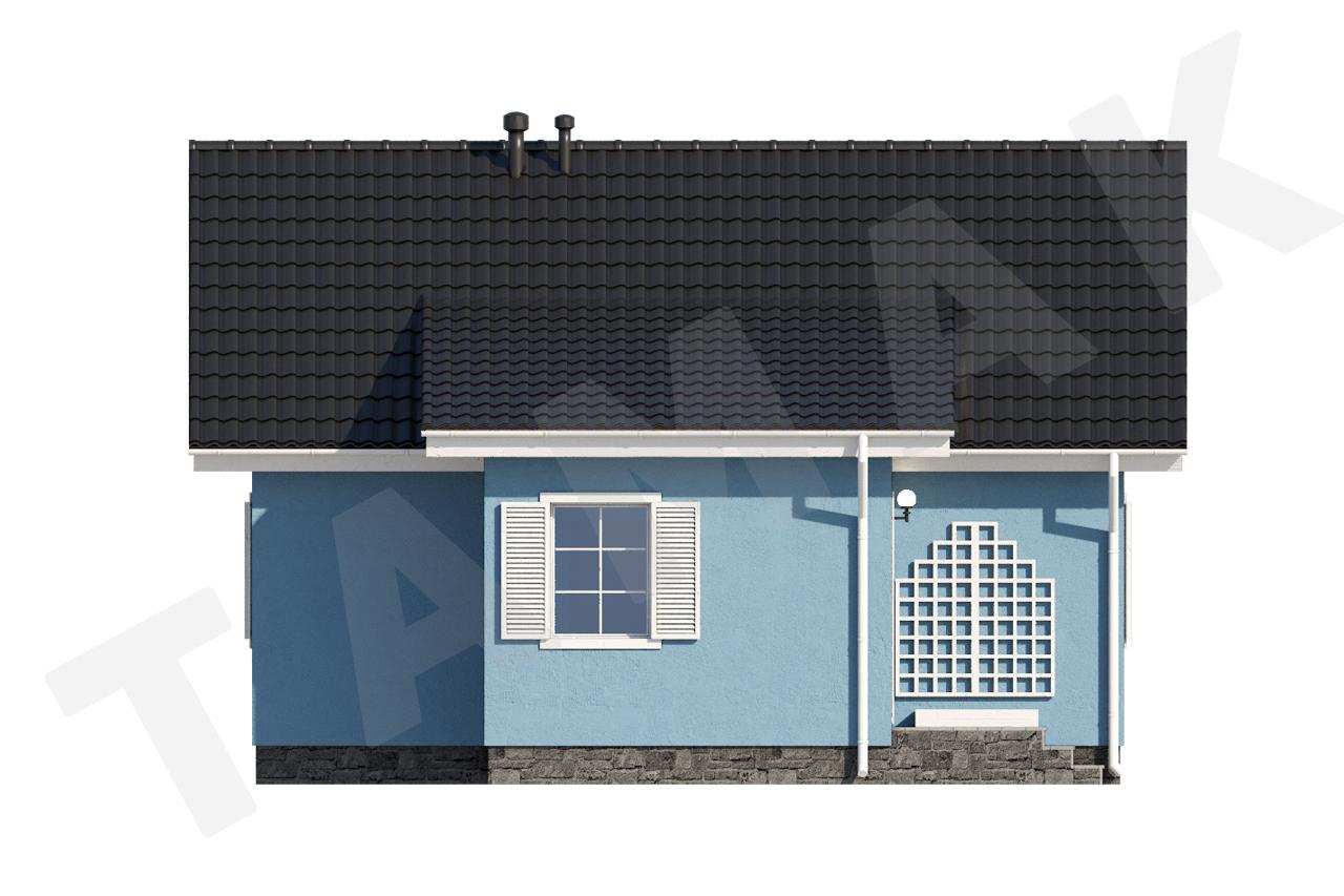 Современный дом для двух семей