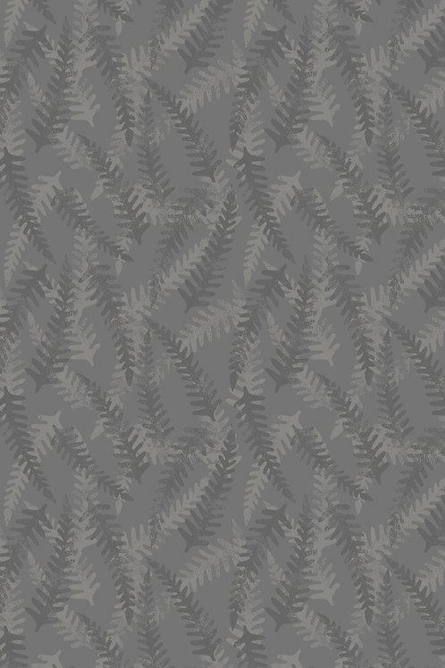 Bluebell Wood - Grey Fern