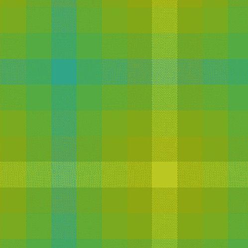 9541 Lichen - Kaleidoscope Stripes and Plaids