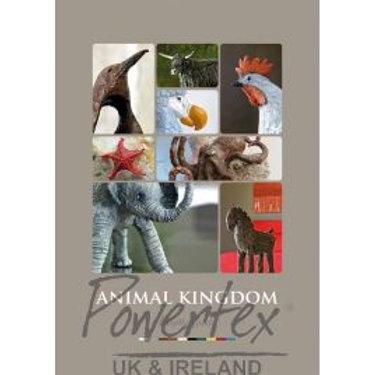 Book- Animal Kingdom