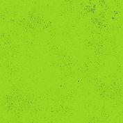 9248g1 neon.jpg