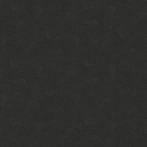 Timeless Treasures - Hue - Black C5148