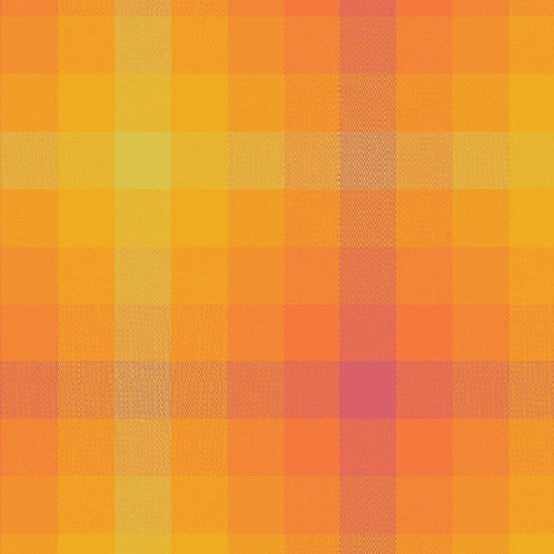 9541 Marmelade- Kaleidoscope Stripes and Plaids