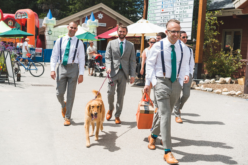 Dogs in Weddings - Timber Ridge Wedding