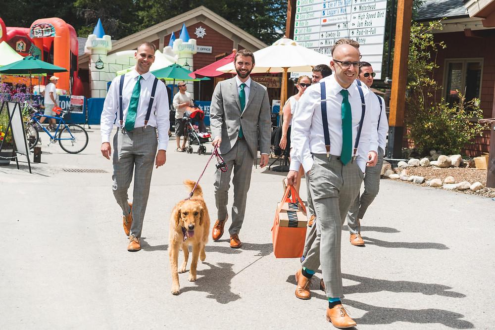 Dogs in Weddings - Timber Ridge Wedding