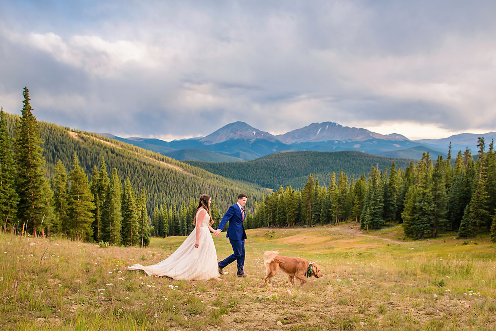 Timber Ridge Wedding - Dog in Wedding - Keystone Wedding