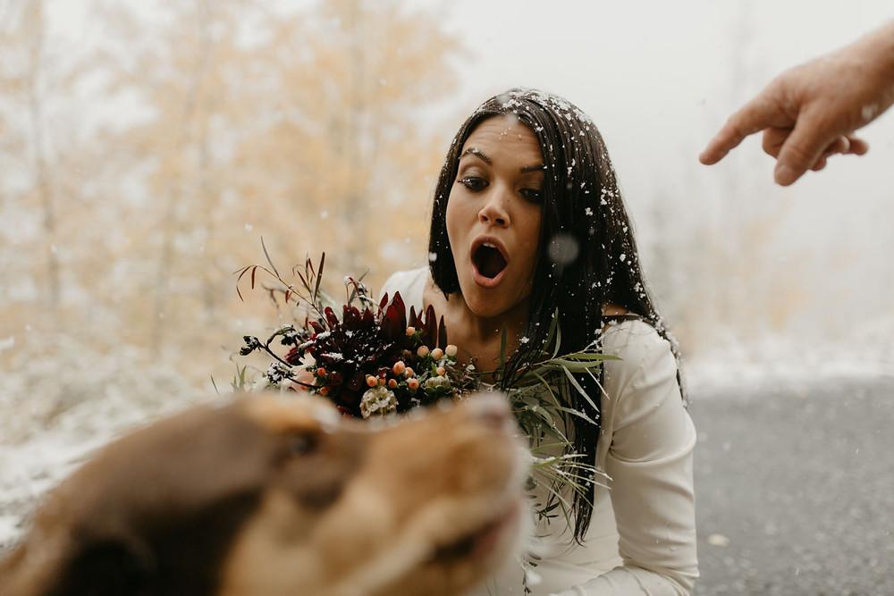 The Lodge at Breckenridge Wedding - Breckenridge Wedding - Dog in Wedding