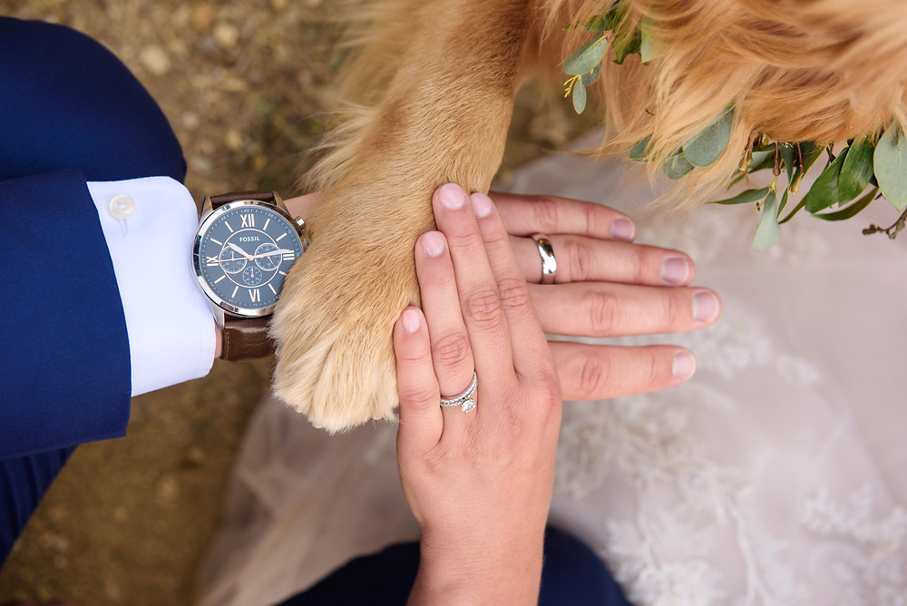 Dog in your wedding - Timber Ridge Wedding - Keystone Wedding