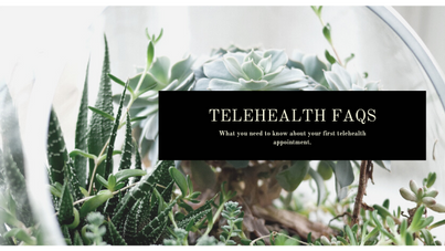 Telehealth FAQs for Clients