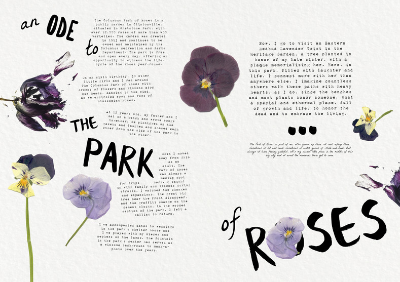 The Park of Roses