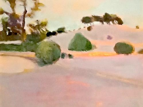 'Lake Mungo' by Meg Sprouster