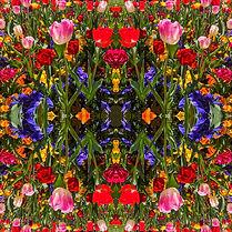 Tanya-Rose-Kaleidoscope-IV.jpeg