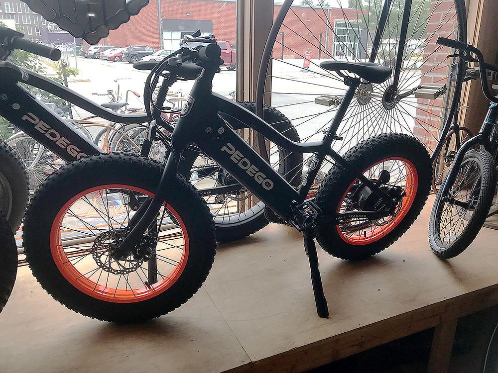 Pedego Fat Tire Bikes
