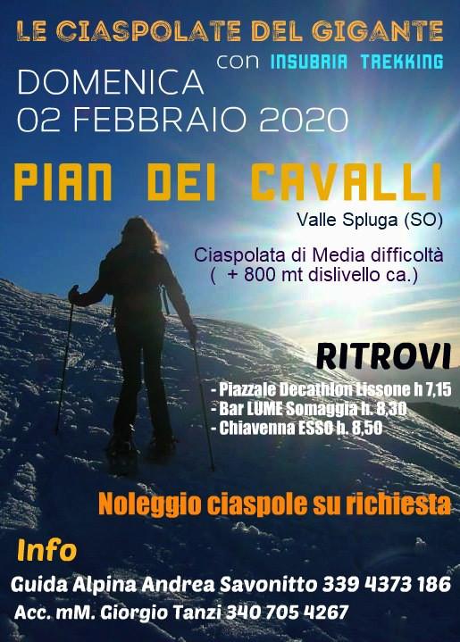 Ciaspolata a Pian dei Cavalli, Valle Spluga -  domenica 02 febbraio