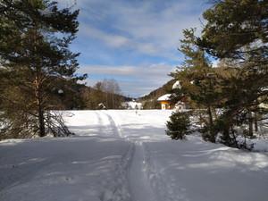 Ciaspolata Pian di Gembro e Monte Belvedere- venerdì 19 febbraio.