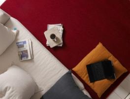 Keep Your Santa Clarita Carpets Fresh for Thanksgiving