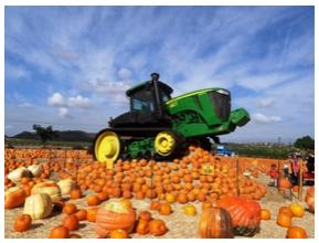 21st Annual Underwood Family Farms Fall Harvest Festival, September 29 to October 31, 2018
