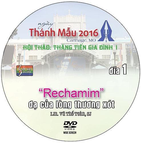 DVDs - Cha Toàn 2016
