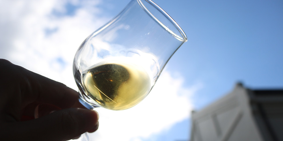 もし僕らのことばがウィスキーであったなら~ウイスキーに親しむ~ (1)