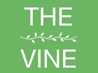 The Vine reaches 20 year milestone!