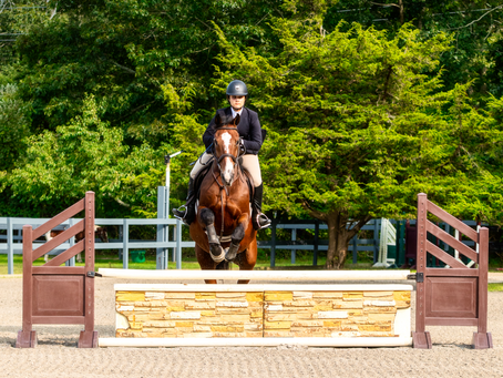 Keeping the Sport Horse or Pony Sound