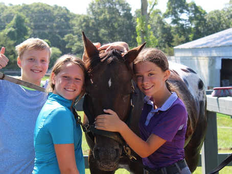 Let Your Child Have The Summer Of Their Dreams At A Horseback Riding Camp