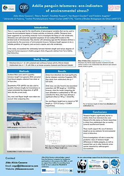 Poster presented at POLAR2018 on the use of telomeres as eco-indicators in Adélie penguins