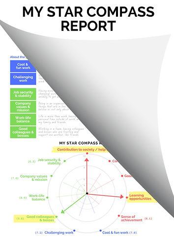 Star%20Compass%20Flip_edited.jpg