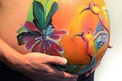 Hummingbird / Kolibrie vogels