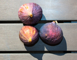 Figues-2