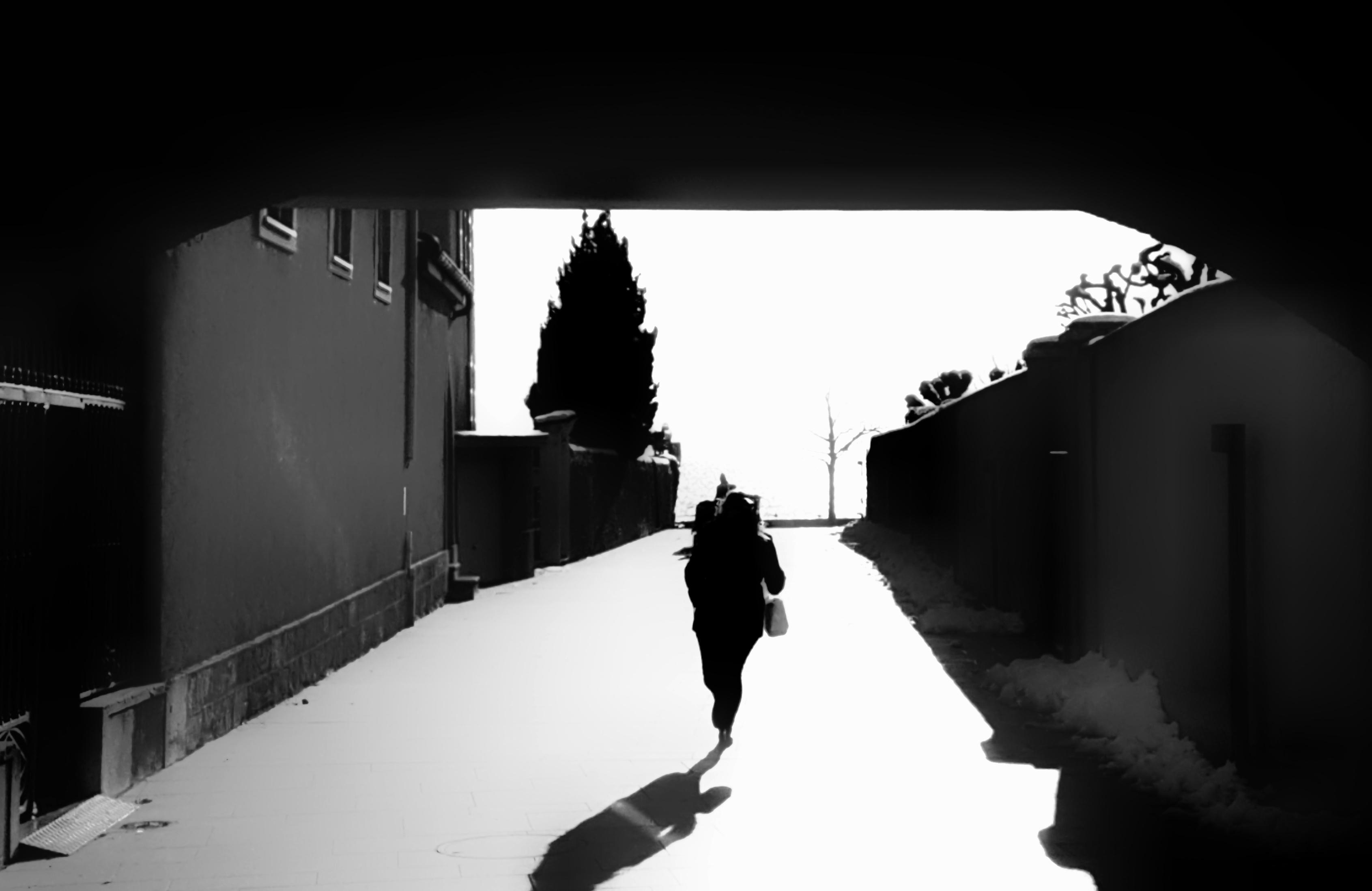 Horizon couru