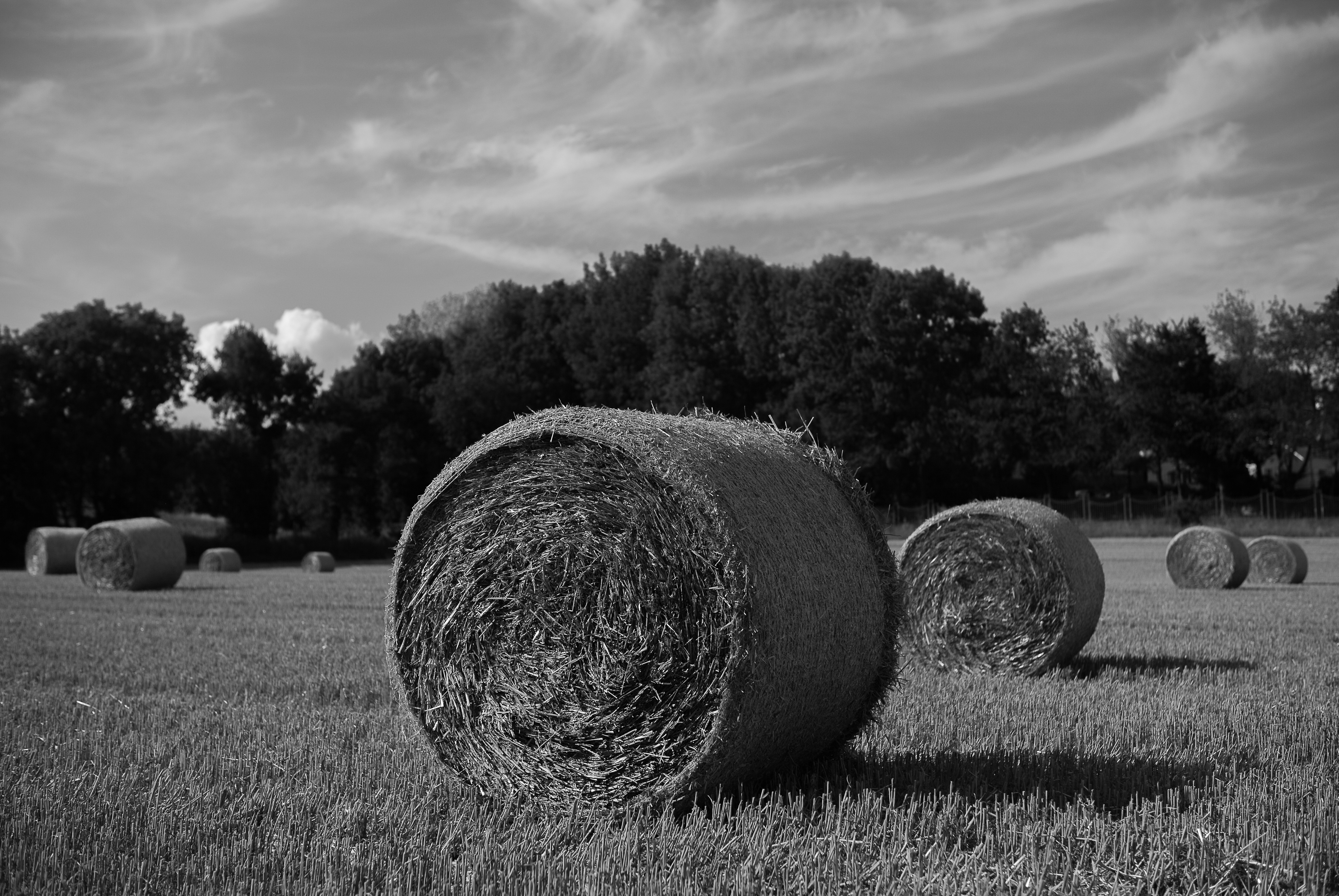 Campagne-12