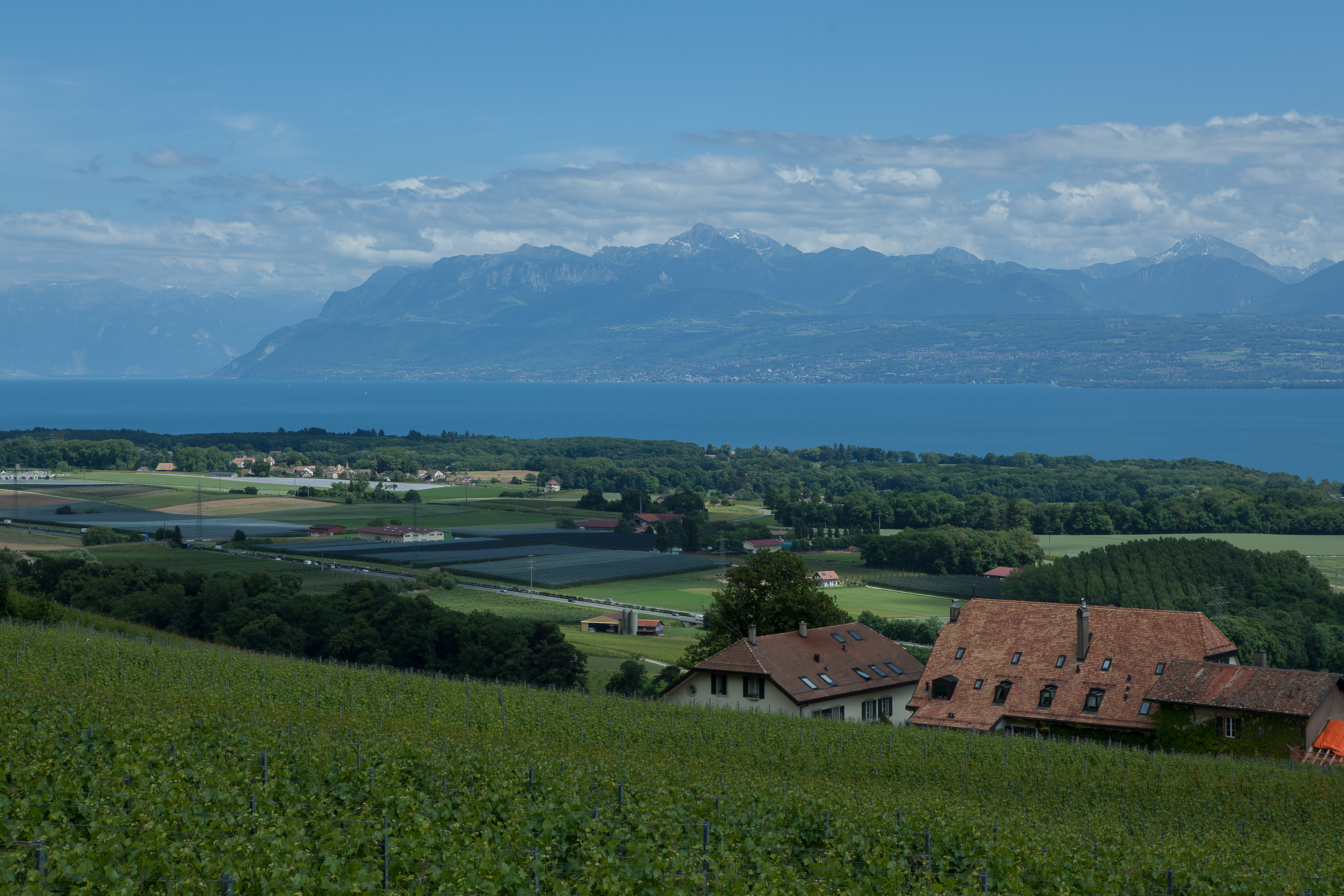 Campagne-15