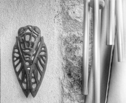 Cigale carillonnée