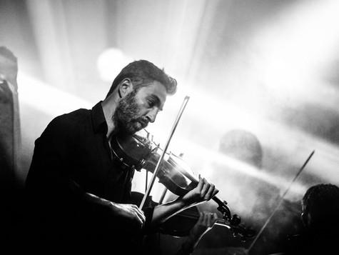 I Violini di Bach
