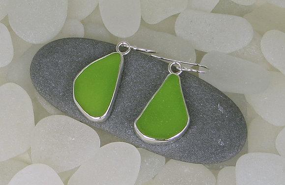 133. Lime Green Sea Glass Earrings