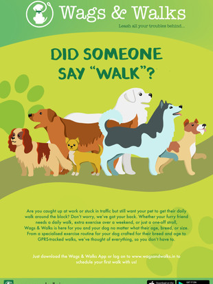 Print Ad - Wags and Walks